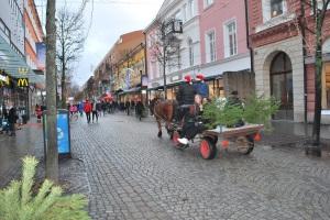 julskyltning2015häst