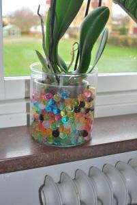 orkideevattenkulor2